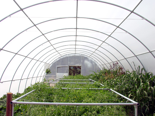Cheap Storage Shed Diy Free Hoop House Greenhouse Plans Make Your Own  Tunnel House