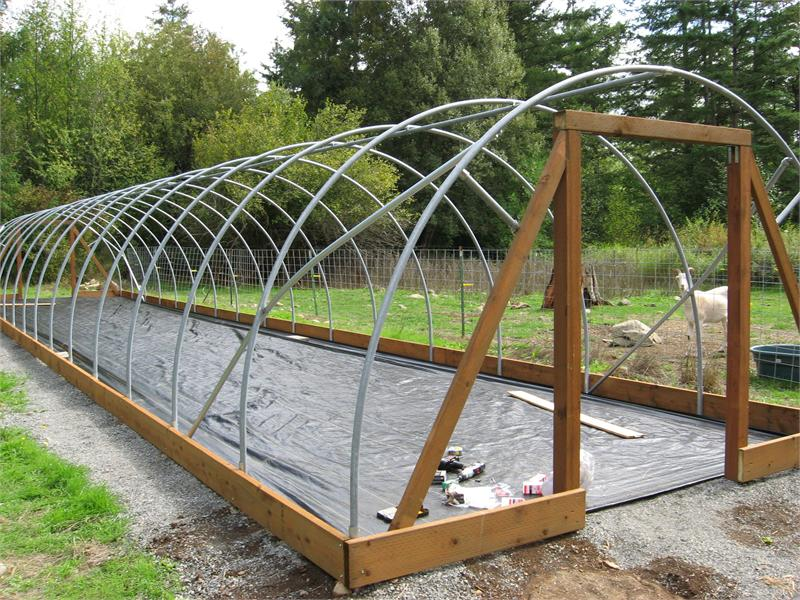 Basic 12x36 greenhouse kit for Build your own greenhouse plans