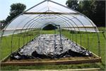 Compound Gothic Hoop GreenhousesHouses